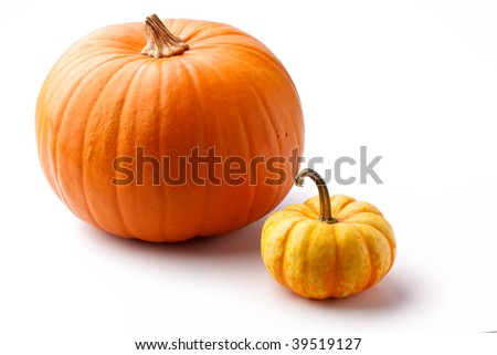 group of pumpkin - stock photo