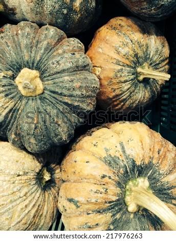 Group of Pumpkin in supermarket  - stock photo