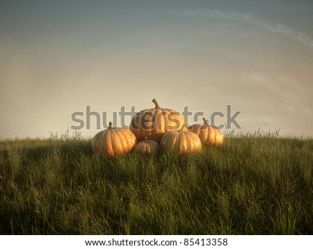 group of pumpkins on lawn - stock photo