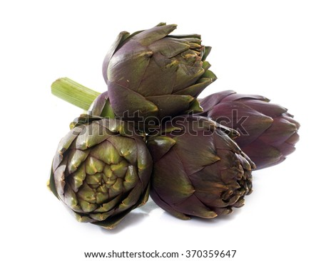 group of purple artichoke in front of white background - stock photo