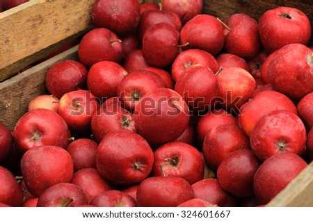 Group of red apples in a wooden box - stock photo