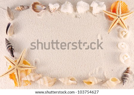 Group of seashells, starfishes on the sand - stock photo