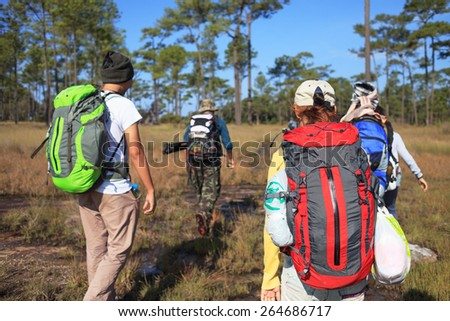 Group of trekkers are walking in mountain - stock photo