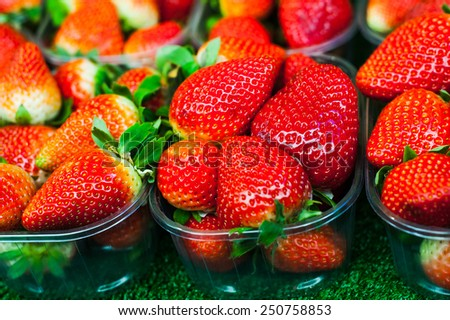 Group of vivid red ripe healthy strawberries in basket on the fruit market - stock photo