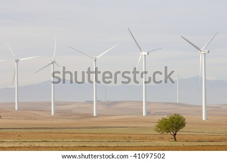 group of windmills and tree at sunrise - stock photo