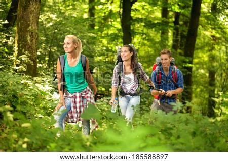 Group of young hiker in beautiful forest - stock photo