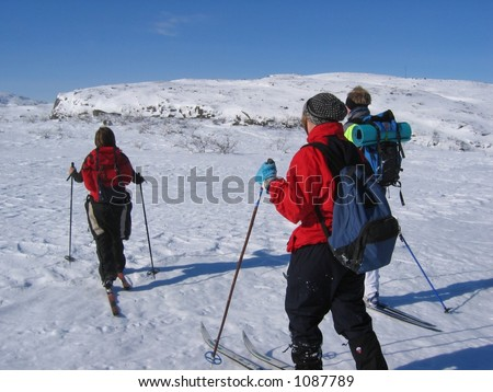 Group of young people skiing in the mountains - stock photo