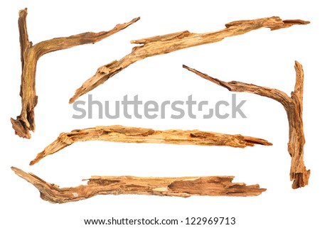 group timber isolated on white background - stock photo
