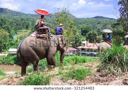 Group tourists to ride on an elephant in forest Chiang mai, Thailand - stock photo