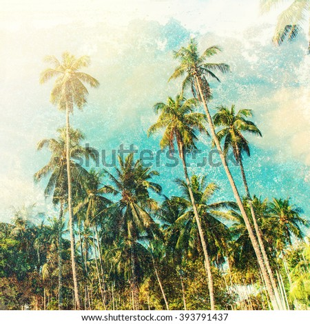 Group Tropical Palm Trees Jungle Toned Vintage Shabby Effect Nature Landscape Background Holiday Travel Design View  - stock photo