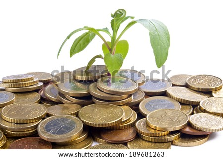 Growing Coins - stock photo