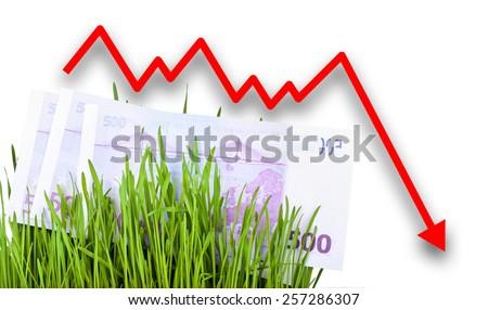 Growing Euro money cash in green grass. Arrow falling down - stock photo