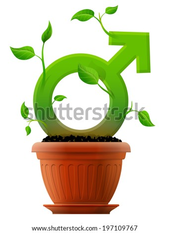 Growing male symbol like plant with leaves in flower pot. Stylized plant in shape of man sign in ground. Image about men's biology and health, male psychology, sex differences, gender role, etc - stock photo
