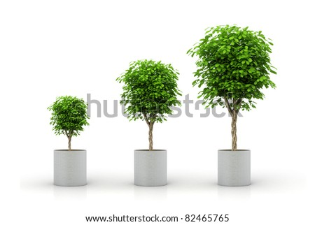 Growing plant concept - stock photo