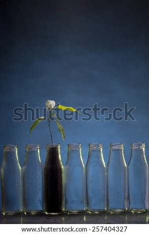 Growing plant in a bottle with ground over blue background - stock photo