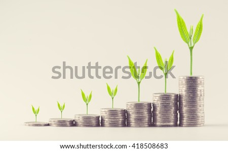 Growing plant on row of coin money for finance and banking concept - stock photo