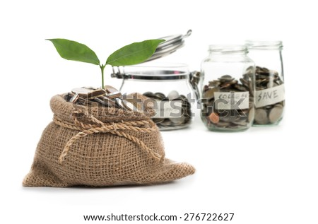Growing plant step with coin money ,save your money for the future. - stock photo