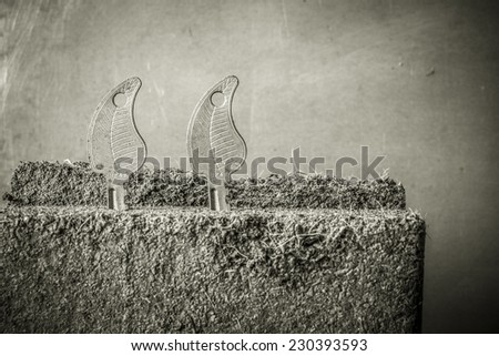 Growth concept with some soil and keys - stock photo