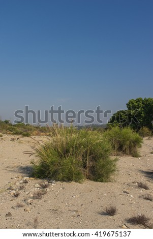 Growth in the Santa Clarita Valley of southern California near the Mojave Desert. - stock photo