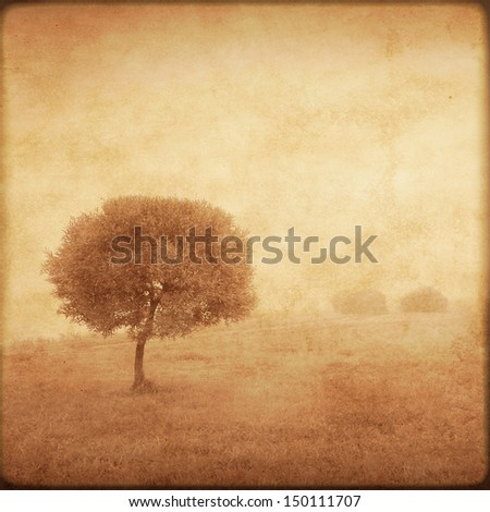 Grunge background with lonely tree. - stock photo
