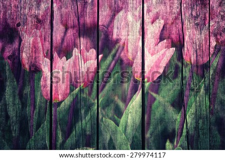 Grunge conceptual purple color flower tulips with green leaves on wooden board background.  - stock photo
