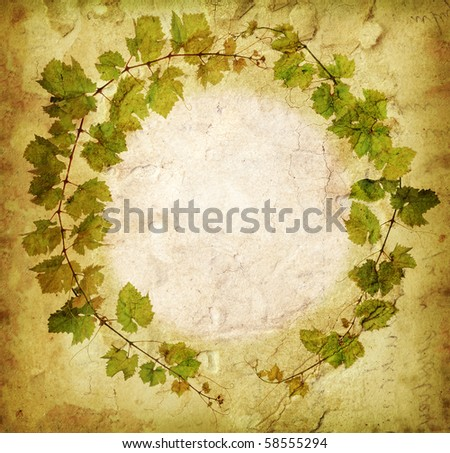 Grunge grapevine circle border - stock photo