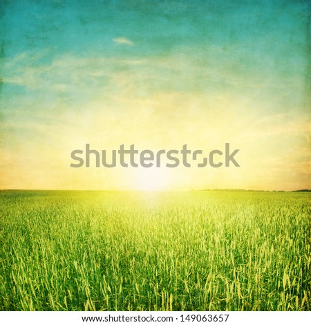 Grunge image of sunset over agricultural field. - stock photo