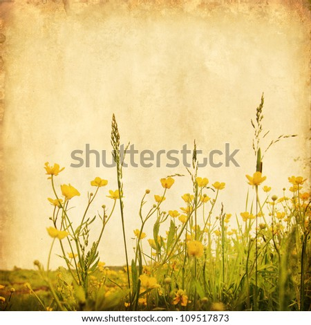 Grunge image of yellow buttercups in the field. - stock photo