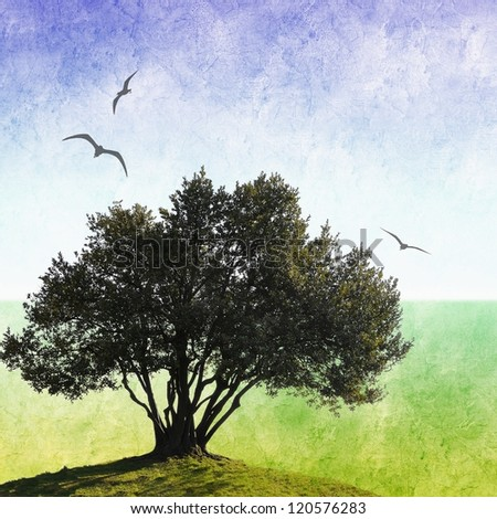 Grunge olive tree background with flying birds - stock photo