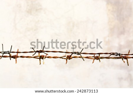 Grunge rusty barbed wire - stock photo