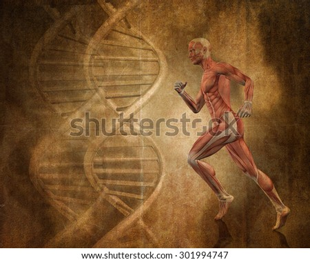 Grunge style background with 3D running man with muscle map and DNA strands - stock photo