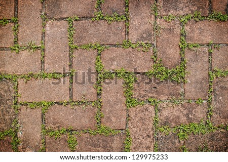 Grungy interlocking concrete pavement with grass growing along its joint for textural background. - stock photo
