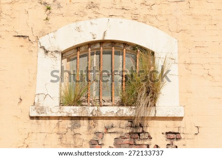 Grungy old building wall and window with foliage growth and cracked plaster - stock photo