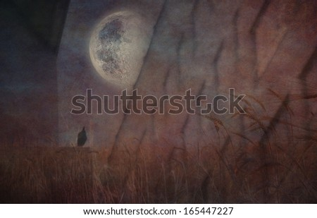 Grungy Sullen Composition - stock photo
