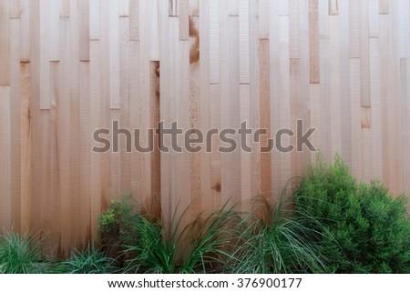 Grungy wood wall and bush - stock photo