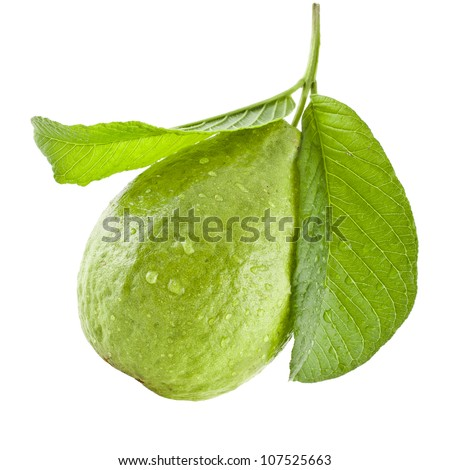 guava fruit with leaves isolated on white background - stock photo