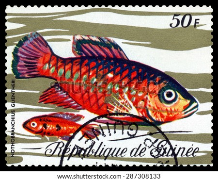 GUINEA - CIRCA 1971: a stamp printed by Guinea show the fishes  Nothobranchius guentheri, circa 1971 - stock photo