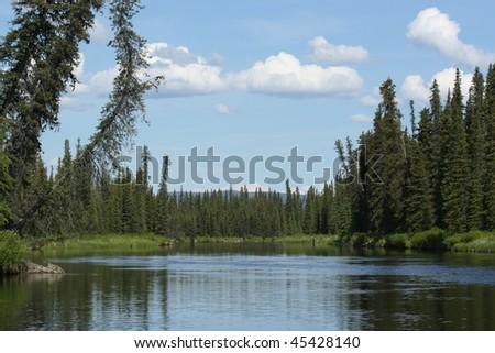 Gulkana River - stock photo
