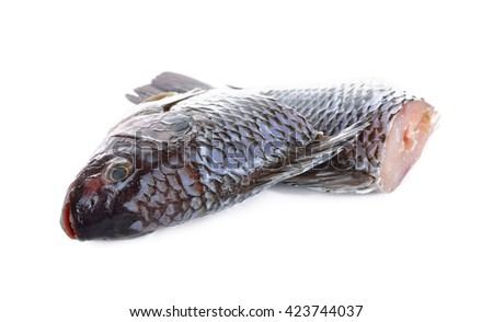 Gutted and scaled Nile Tilapia fish on white background - stock photo