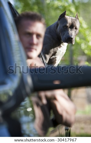Guy in truck with pit bull - stock photo