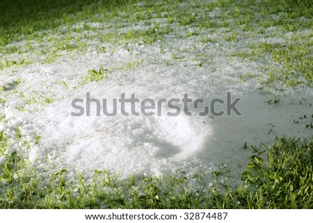 hail after storm on grass, pea sized hail fell on meadow - stock photo