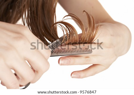 hair stylist cutting wet hair with professional scissors, beauty salon - stock photo