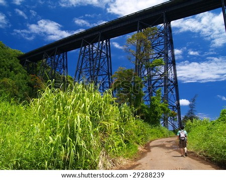 Hakalau bridge and a man - stock photo