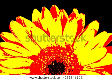 Half of orange and yellow gerbera flower, posterize style image. - stock photo