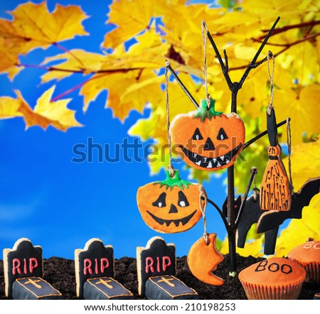 Halloween cookies hanging on a tree on a background of autumn. Focus on the center pumpkin cookies - stock photo
