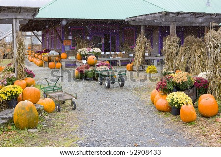 Halloween in Middlesex, Vermont, USA - stock photo