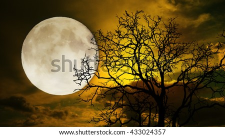 Halloween night ; A dark tree against a full moon with clouds in the sky for a sad or scary concept. - stock photo