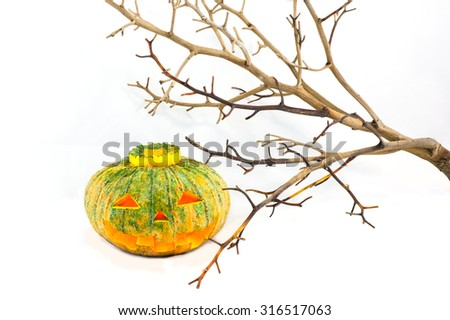 Halloween pumpkin and dead tree on white background - stock photo