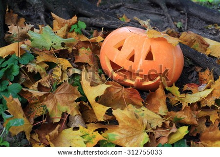 Halloween pumpkin in autumn forest - stock photo