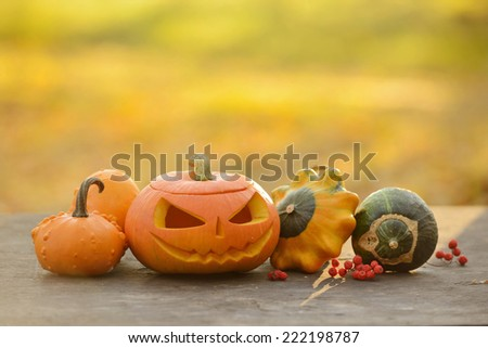 Halloween pumpkin on wooden planks with blur background - stock photo